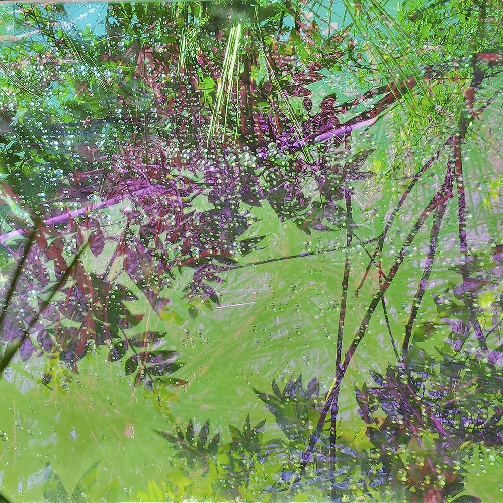 "Karine Laval<br /> <em>Untitled #13 </em>from the<em>Heterotopia </em>Series, 2014<br /> Chromogenic print<br /> 48 x 48""  Edition of 5<br />"
