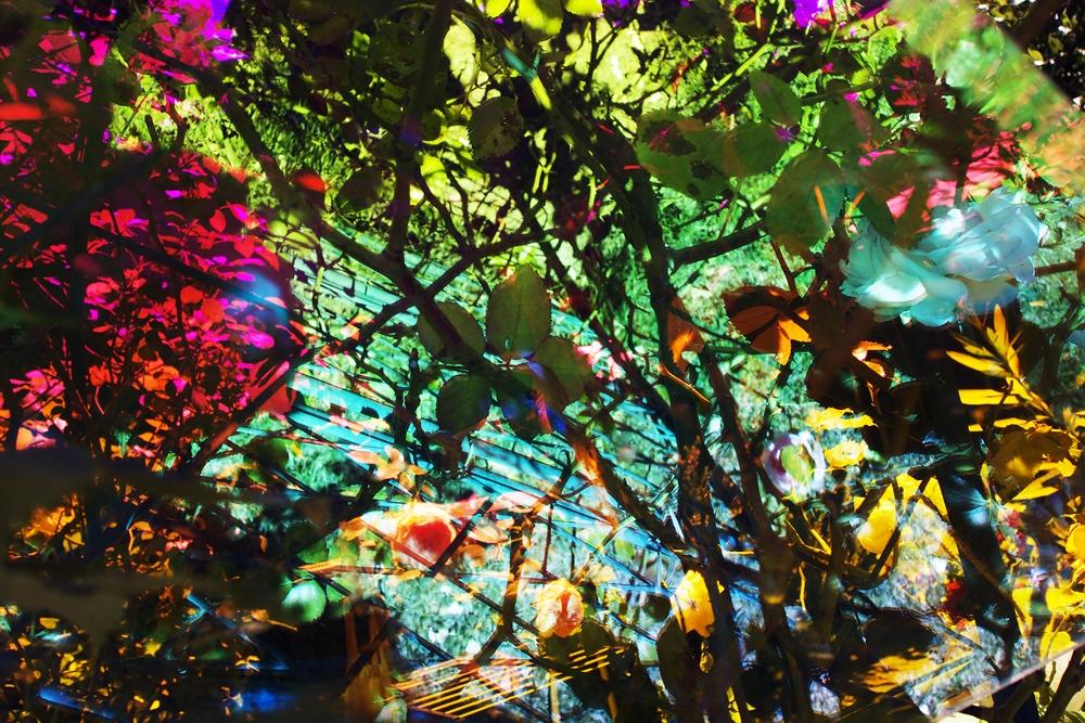 "Karine Laval<br /> <em>Untitled #45</em>from the<em>Heterotopia </em>Series, 2014<br /> Chromogenic print<br /> 48 x 72""  Edition of 5<br />"