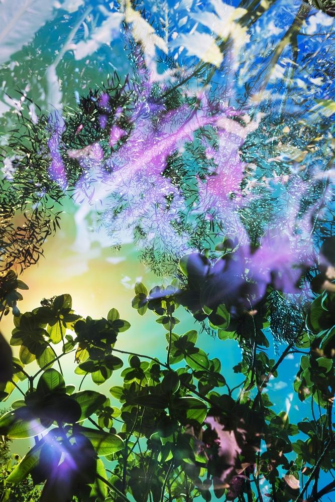 "Karine Laval<br /> <em>Untitled #54</em>from the<em>Heterotopia </em>Series, 2015<br /> Chromogenic print<br /> 72 x 48""  Edition of 5<br />"