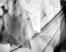 """Lauren Semivan<br /> <em>Messenger</em>, 2015<br /> Archival ink print<br /> 24 x 30""""  Edition of 10<br /> 40 x 50""""  Edition of 5"""