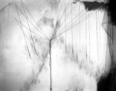 "Lauren Semivan<br /> <em>Seven Sisters</em>, 2015<br /> Archival ink print<br /> 24 x 30""  Edition of 10<br /> 40 x 50""  Edition of 5"